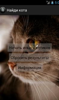 Найди кота на андроид